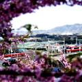 京急・三崎口駅