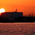 Photos: 船橋港