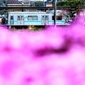 Photos: JR相模線・相武台下駅