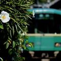 Photos: 江ノ電・和田塚駅