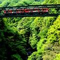 箱根登山鉄道・出山鉄橋