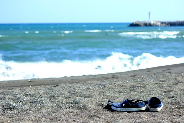 写真: 大磯海岸