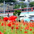 久里浜駅前