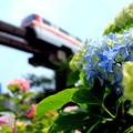 東京モノレール・浜松町~天王洲アイル