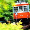 箱根登山鉄道・強羅~彫刻の森