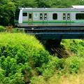 Photos: 横浜線・新横浜~小机