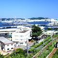 横須賀線・横須賀~田浦