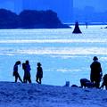 Photos: お台場海浜公園