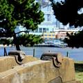 Photos: 台場公園