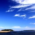 横須賀港~猿島