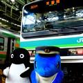 Photos: 東京総合車両センター