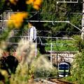 横須賀線・鎌倉~北鎌倉
