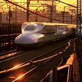 Photos: 夕焼け新幹線