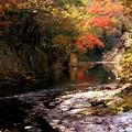 Photos: 滑川