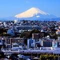 富士山電車(京急バージョン)