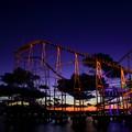 Twilight Rollercoaster