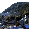 Photos: 江ノ電俯瞰