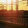 夕焼け電車(東急バージョン)