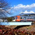 Photos: 富士山電車(岳南電車バージョン)