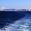 Tokyo Bay Cruising
