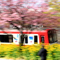 お花見電車(京急:疾走バージョン)