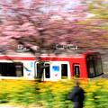 Photos: お花見電車(京急:疾走バージョン)
