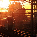Photos: 夕焼け電車(成田エクスプレスバージョン)