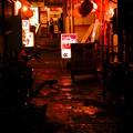Photos: 雨の中華街