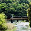 Photos: 新緑特急~Quest For Green