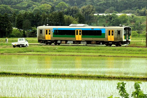 Photos: 田園列車