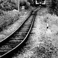 Photos: もう一つのいすみ鉄道