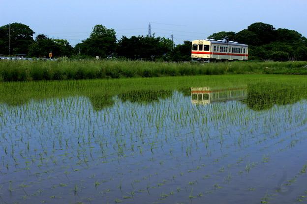 Photos: 田園列車(関東鉄道バージョン)