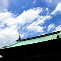 Photos: Blue Sky Tokyo