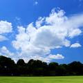 Blue Sky Tokyo (大奥バージョン)