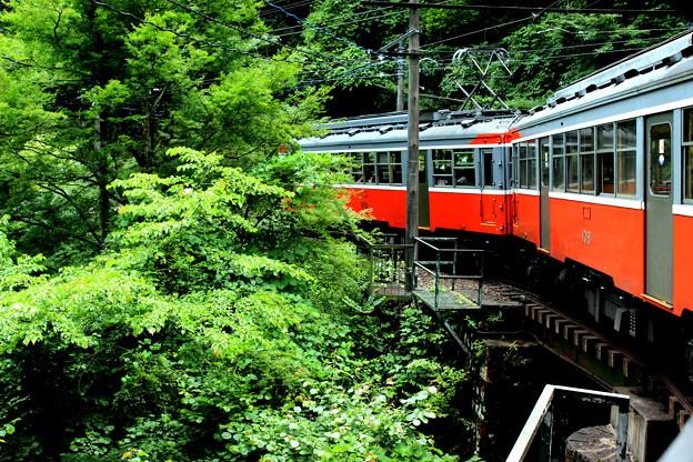 Photos: 箱根の車窓から