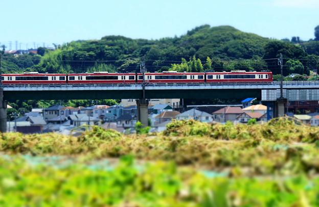 Photos: 畑電車