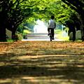 サイクリング×2 ヤッホー×2~♪