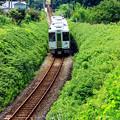 Photos: 奥武蔵野路を行く