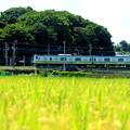 初秋の横浜線