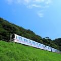 Photos: 青空電車(京王バージョン)