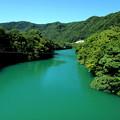 Photos: 緑の河
