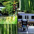 カマクラ・リキシャマン With 横須賀線&お寺
