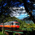 Photos: ザ・箱根登山鉄道