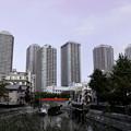 Photos: 下町 VS 高層マンション