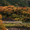 紅葉電車~御殿場線バージョン~