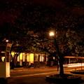 Photos: 異人館の夜