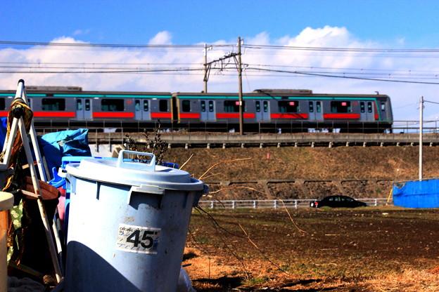写真: 畑電車(東急バージョン)