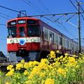 Photos: Red Lucky Train