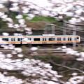 疾走!桜電車