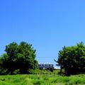 牧場チック東武